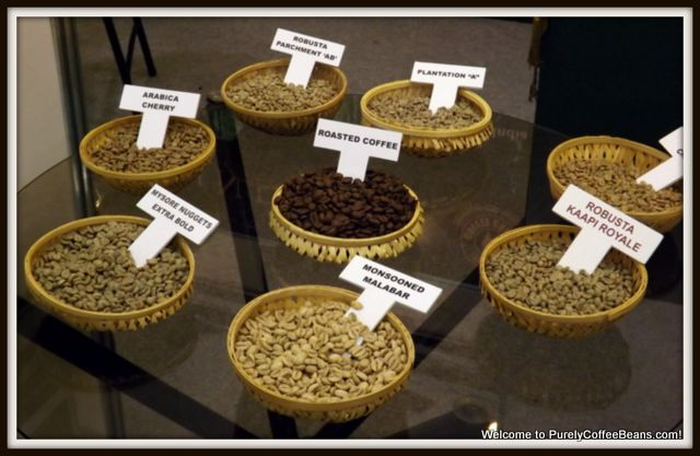Image result for types of coffee produced in india